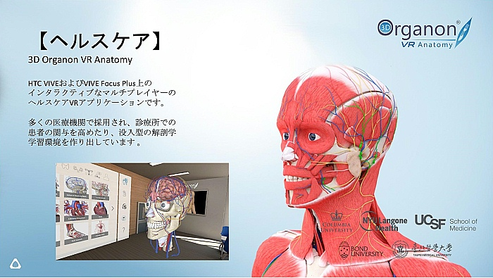 Vive Pro EyeとVive Focus Plusで視線探査とストリーミングVRを